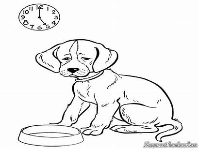Dog Coloring Realistic Dogs Animals Gambar Anjing