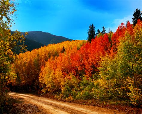 fall colors colorado port countryside colours tripsetter inc