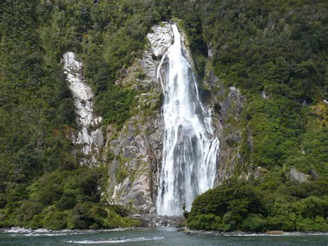 cruise milford gallery milford sound  zealand