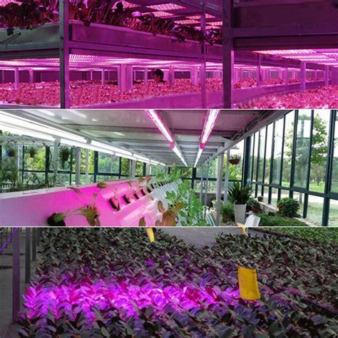lade a led per piante lada led per coltivazione di piante in interno 15w