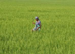 Farm Loan Waiver Likely To Push Inflation Higher By 20 Bps