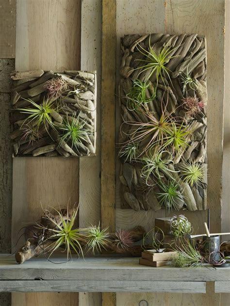 driftwood art   design material   home