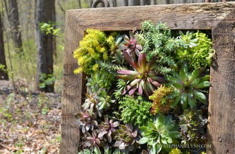 How To Build A Vertical Garden Frame by Best 25 Vertical Wall Planters Ideas On