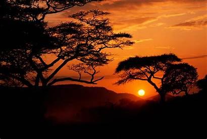 Sunset Sunrise Sunsets Africa Silhouette Serengeti Landscapes