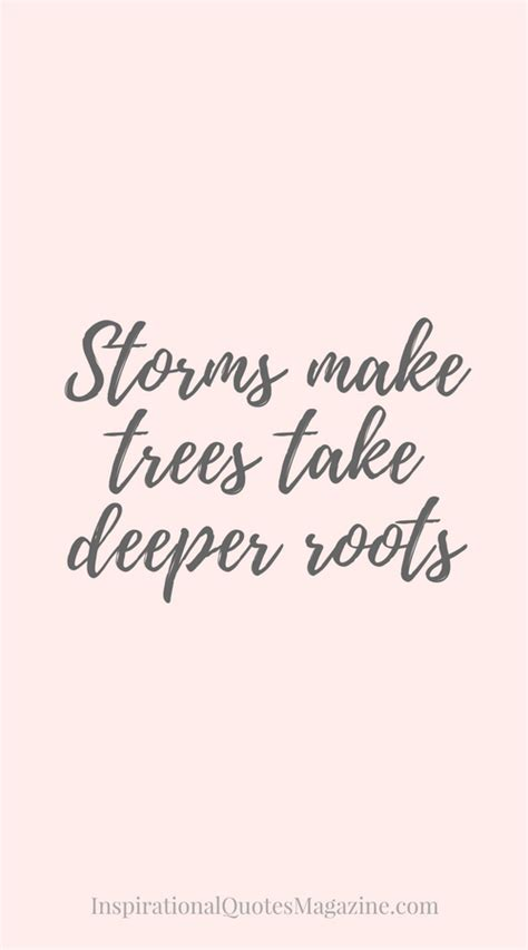 storms  trees  deeper roots bible verses