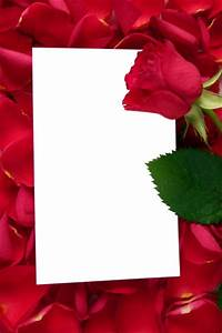 Large Transparent Vertical Frame with Red Roses | منتدى ...
