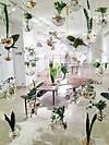 Indoor Garden Ideas indoor hanging garden ideas