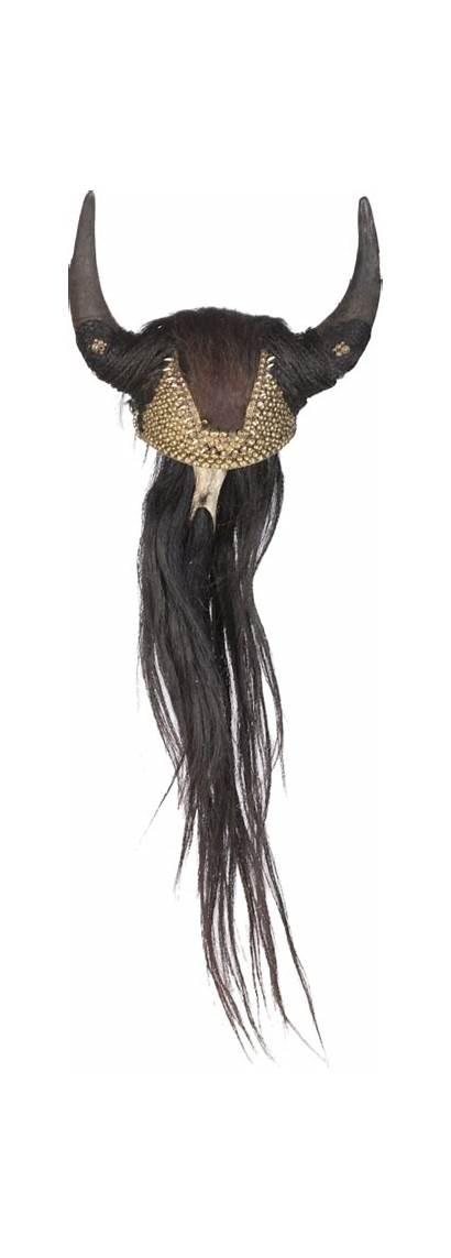 Headdress Viking Horns Bison Head Horse Teeth