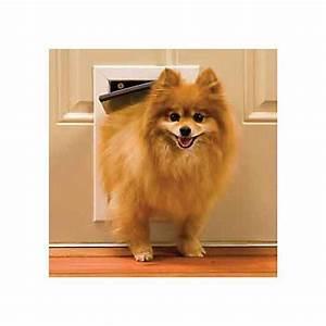petsafe aluminum freedom pet door petco With dog door store