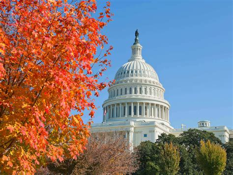 Washington Dc Tours Voted #1  See The Best First With Old