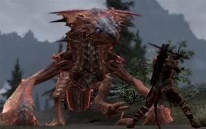 1000+ images about Skyrim Dawngaurd DLC on Pinterest ...