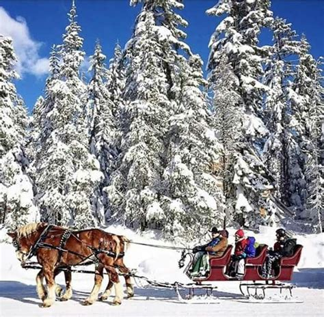 Oregon Scenic photos Country christmas Winter wonderland