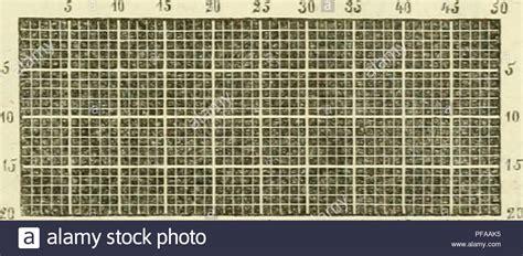 winterschutz für gräser fuchsschwanz stock photos fuchsschwanz stock images alamy