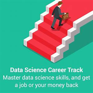 Data Science Career Paths: Different Roles in the Industry ...