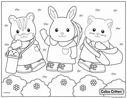 Coloring Critters Park Calico Pages Printable