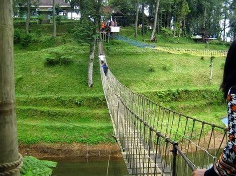 kebun teh pagilaran batang wisata  wahana outbond keren