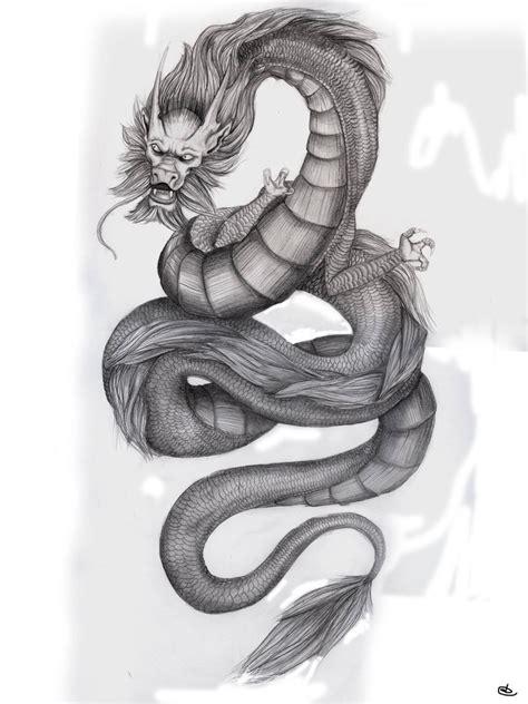 stunning  realistic dragon drawings