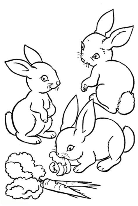 gratis ausmalbilder kaninchen ausmalbilder