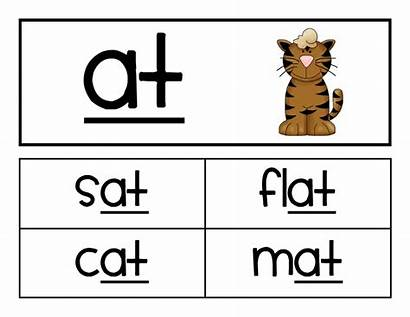 Word Cards Families Worksheets Flashcards Activities Cliparts
