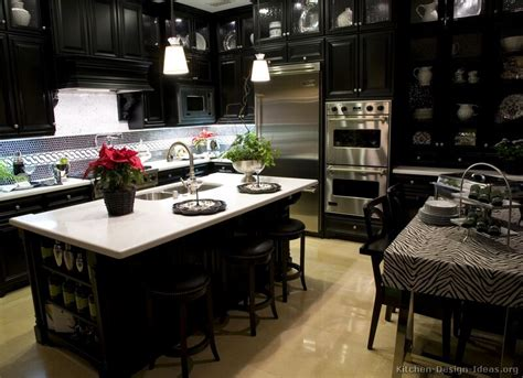 black kitchen cabinets pictures black and white kitchen designs ideas and photos 4696