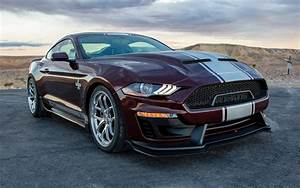 2018 Shelby Super Snake - Wallpapers and HD Images Car Pixel