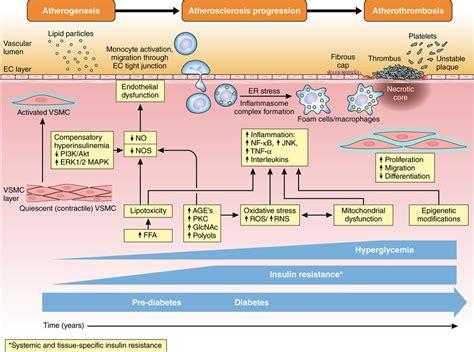clinical update cardiovascular disease  diabetes