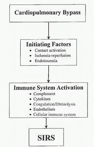 Inflammatory Responses To Cardiopulmonary Bypass