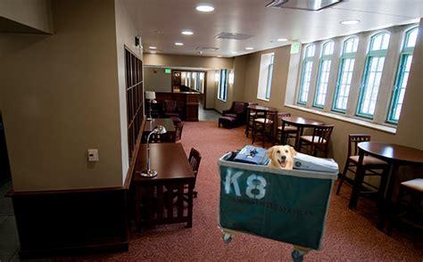 ways  smuggle  family pet   msu dorms