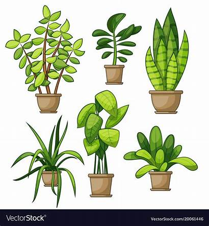Plants Different Vector Clipart Interior Type Royalty