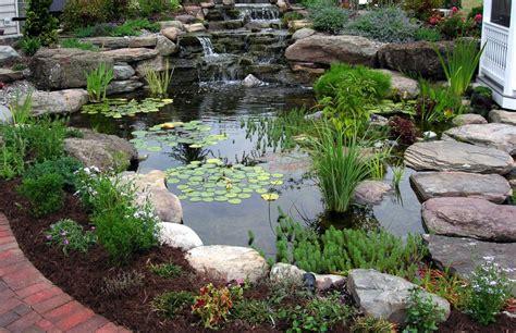 koi pond design pictures mountain lake koi pond design with plants home design exles