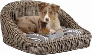 Panier Chien Design : quel panier ou corbeille choisir pour mon chien blog ~ Teatrodelosmanantiales.com Idées de Décoration