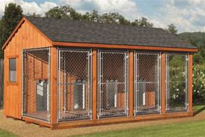 dog kennels hometown sheds gastonia north carolina With storage shed with dog kennel