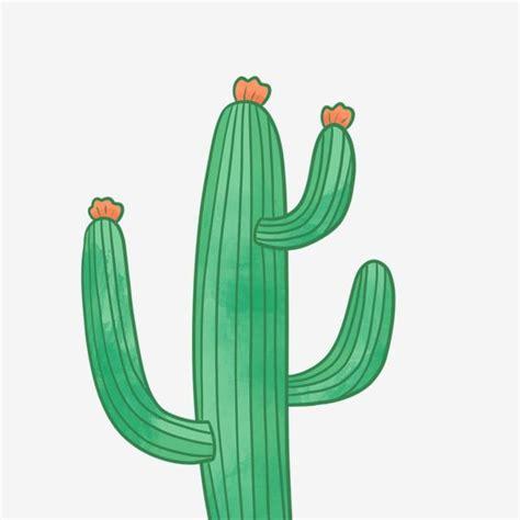 แคคตัสน่ารัก, พืช, ปลูก, วาดด้วยมือภาพ PNG และ PSD สำหรับ ...