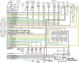 2001 Ford F150 Wiring Diagram In B2network Co Best Of