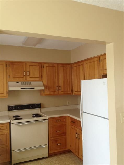 starkville apartments one bedroom 1 bedroom apartments in starkville ms best free home design idea inspiration