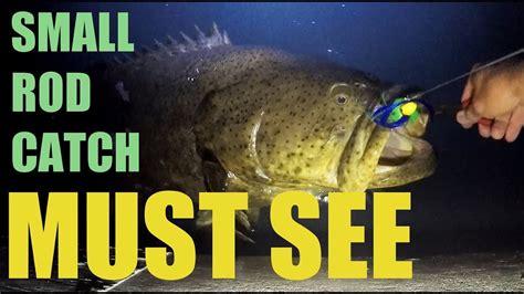 goliath grouper fishing