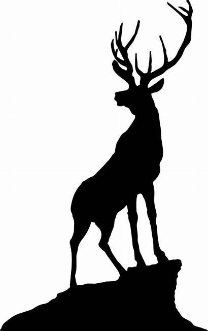 Deer Scenery Clipart Silhouette Jasper Transparent Elk