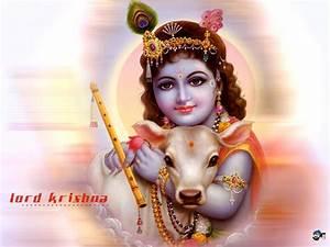 Ramakrishna Goverdhanam: Lord Sri Krishna Photos and ...