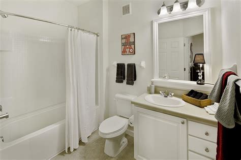 14 College Apartment Bathroom