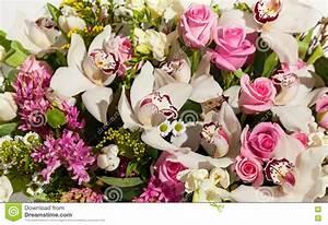 Beau Bouquet De Fleur : beau fond des bouquets de fleurs composition en bouquet ~ Dallasstarsshop.com Idées de Décoration