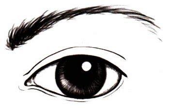 Как нарисовать реалистичный глаз карандашом поэтапно рисуем тут