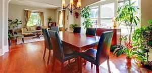Dekorative Pflanzen Fürs Wohnzimmer : pflegeleichte pflanzen dekorative ideen f r die inneneinrichtung ~ Eleganceandgraceweddings.com Haus und Dekorationen