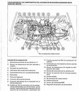Manual Taller Completo Fiat Palio   Siena 1 3 1 6 1 4