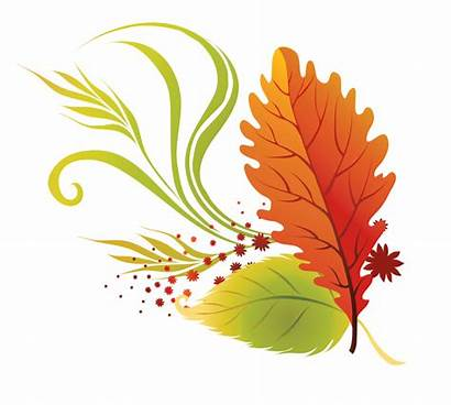 Transparent Fall Leaves Clipart Autumn Paradise