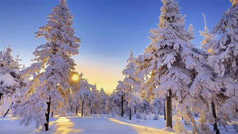 Beautiful Winter Wonderland Wallpaper (43+ Images