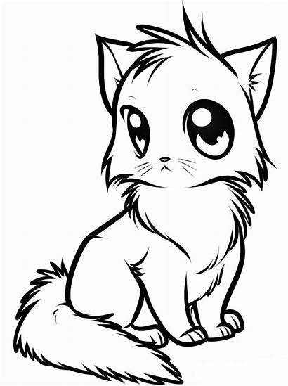 Coloring Kitten Animal Pages