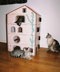 Maison Exterieur Pour Chat : fabriquer niche chat bois ~ Dailycaller-alerts.com Idées de Décoration