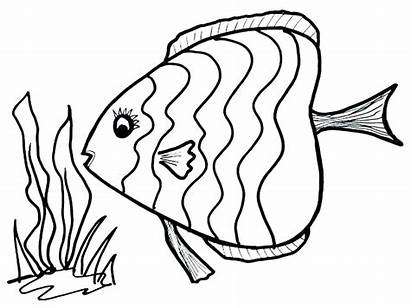 Tuna Coloring Pages Fish Printable Getcolorings