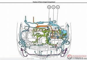 Toyota Prius C Parts Diagram