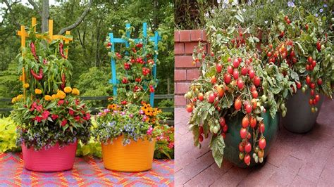 creative container vegetable gardening ideas clever
